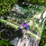 『Coyote』No.59 Summer/Autumn 2016