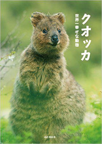 これはリアル「ピカチュウ」か!? 笑顔を浮かべる動物「クオッカ」が可愛い