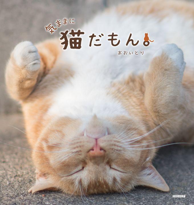 """ツイッターで大人気「鼻提灯猫」の写真家が、""""気ままなネコ""""の写真集発売"""