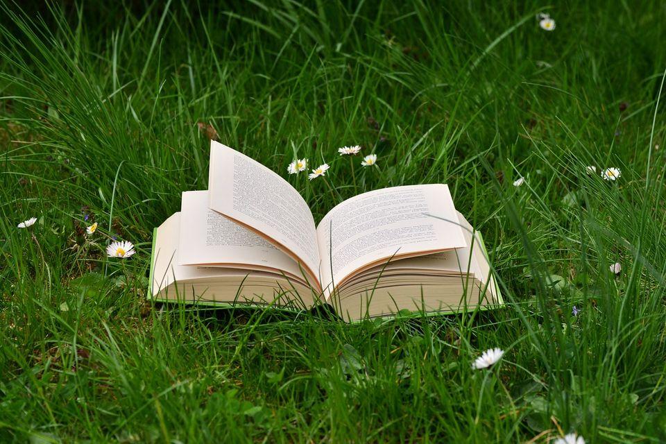 """""""日语能力""""是""""生活能力""""。为什么深入阅读书籍很重要?"""